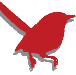 Redbird Studio Icon